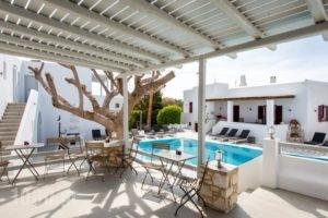 Anemomylos Residence_holidays_in_Hotel_Cyclades Islands_Paros_Naousa