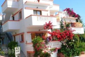 Villa Elizea_accommodation_in_Villa_Crete_Chania_Agia Marina