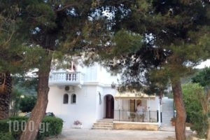 Vicky Apartments_travel_packages_in_Ionian Islands_Zakinthos_Zakinthos Rest Areas