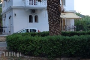 Vicky Apartments_lowest prices_in_Apartment_Ionian Islands_Zakinthos_Zakinthos Rest Areas