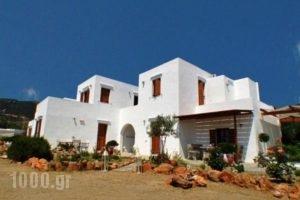 Blue Fish_holidays_in_Hotel_Cyclades Islands_Sifnos_Sifnos Chora