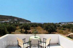 Blue Fish_best deals_Hotel_Cyclades Islands_Sifnos_Sifnos Chora