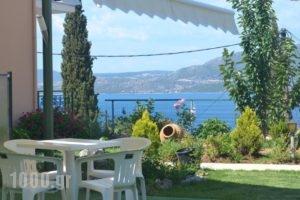 Vergina Star Hotel_holidays_in_Hotel_Ionian Islands_Lefkada_Lefkada's t Areas