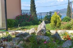 Vergina Star Hotel_lowest prices_in_Hotel_Ionian Islands_Lefkada_Lefkada's t Areas