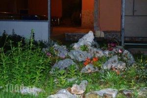 Vergina Star Hotel_best deals_Hotel_Ionian Islands_Lefkada_Lefkada's t Areas