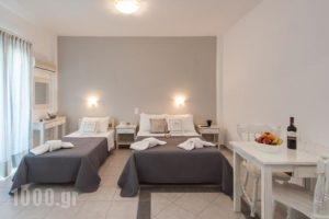 Anixis Studios_best prices_in_Hotel_Cyclades Islands_Paros_Paros Chora