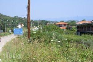Dimitros Apartments_best prices_in_Apartment_Macedonia_Halkidiki_Chalkidiki Area