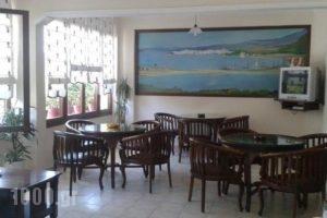Xanemos Studios_holidays_in_Hotel_Sporades Islands_Skiathos_Skiathoshora