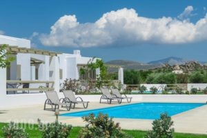 Sea & Olives Villas_accommodation_in_Villa_Cyclades Islands_Naxos_Naxos chora