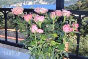 Paradise Apartments_best deals_Apartment_Ionian Islands_Corfu_Palaeokastritsa