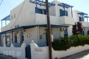 Apostolis Studios_holidays_in_Hotel_Cyclades Islands_Paros_Paros Chora