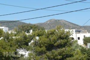 Apostolis Studios_lowest prices_in_Hotel_Cyclades Islands_Paros_Paros Chora