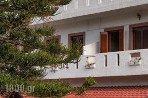 Knossos Apartments_holidays_in_Apartment_Crete_Heraklion_Matala