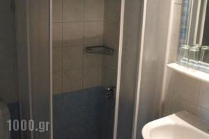 Hotel Kanellakis_holidays_in_Hotel_Thessaly_Magnesia_Pilio Area
