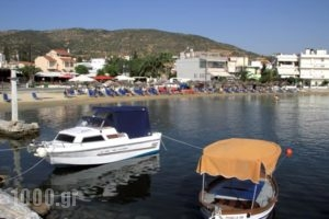 Hotel Stella_lowest prices_in_Hotel_Thessaly_Magnesia_Chania