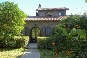 Red Bishop Villa_lowest prices_in_Villa_Peloponesse_Achaia_Akrata