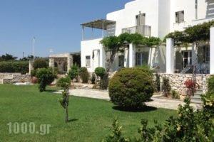 Elizabeth_holidays_in_Hotel_Cyclades Islands_Paros_Paros Chora