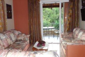 Anchor Studios_best deals_Hotel_Ionian Islands_Kefalonia_Kefalonia'st Areas