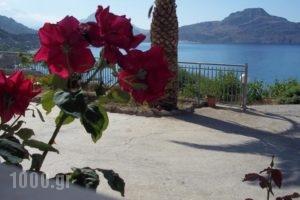 Joanna Studios_holidays_in_Hotel_Crete_Rethymnon_Plakias