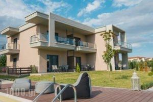 Olea Mare_best prices_in_Hotel_Macedonia_Halkidiki_Poligyros
