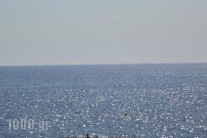 Lagonas View Studios_best prices_in_Hotel_Dodekanessos Islands_Rhodes_Kallithea