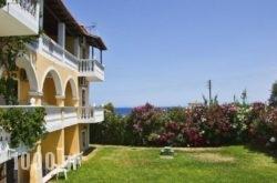 Studios Petra in Zakinthos Rest Areas, Zakinthos, Ionian Islands