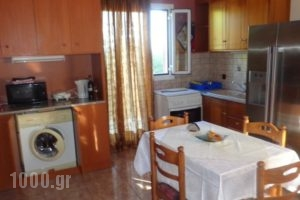 Anchor Studios_lowest prices_in_Hotel_Ionian Islands_Kefalonia_Kefalonia'st Areas