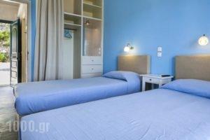 Metaxatos Apartments_best deals_Apartment_Ionian Islands_Kefalonia_Argostoli