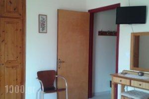 The Red Dragon_holidays_in_Hotel_Ionian Islands_Corfu_Dasia