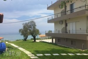 Georgia Apartments_lowest prices_in_Apartment_Ionian Islands_Zakinthos_Zakinthos Rest Areas