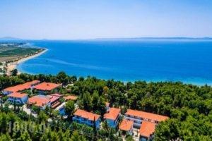 Philoxenia Bungalows_lowest prices_in_Hotel_Macedonia_Halkidiki_Psakoudia