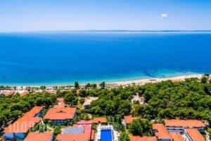 Philoxenia Bungalows_best prices_in_Hotel_Macedonia_Halkidiki_Psakoudia