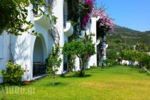 Spiros Studios_lowest prices_in_Hotel_Epirus_Preveza_Parga