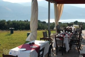 Villa Forestata_accommodation_in_Villa_Ionian Islands_Kefalonia_Kefalonia'st Areas