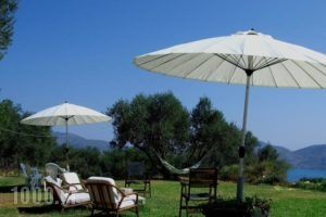 Villa Forestata_travel_packages_in_Ionian Islands_Kefalonia_Kefalonia'st Areas