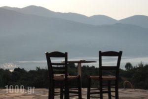 Villa Forestata_holidays_in_Villa_Ionian Islands_Kefalonia_Kefalonia'st Areas