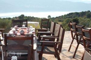 Villa Forestata_best deals_Villa_Ionian Islands_Kefalonia_Kefalonia'st Areas
