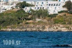 Hippocampus Hotel in Paros Chora, Paros, Cyclades Islands