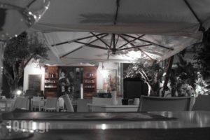 Novecento Studios_travel_packages_in_Crete_Rethymnon_Rethymnon City