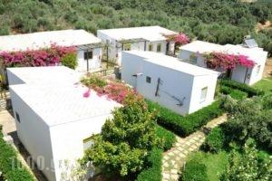 Ikaros Studios_holidays_in_Hotel_Crete_Rethymnon_Plakias