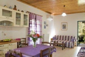 Villa Nefeli_lowest prices_in_Villa_Ionian Islands_Lefkada_Lefkada's t Areas