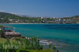 Plaka Studios_holidays_in_Hotel_Aegean Islands_Chios_Aghia Ermioni