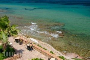 Plaka Studios_travel_packages_in_Aegean Islands_Chios_Aghia Ermioni