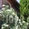 Sunray Studios_holidays_in_Hotel_Macedonia_Thessaloniki_Thessaloniki City