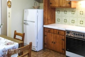Blue Era Apartments_lowest prices_in_Apartment_Cyclades Islands_Andros_Batsi