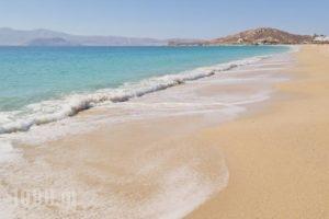 Karabatsis Studios_best prices_in_Hotel_Cyclades Islands_Naxos_Agios Prokopios
