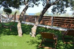 Melia Sol Art Studios_best deals_Hotel_Aegean Islands_Chios_Chios Rest Areas