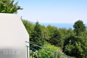Villa Ton Rodon_holidays_in_Villa_Thessaly_Magnesia_Mouresi