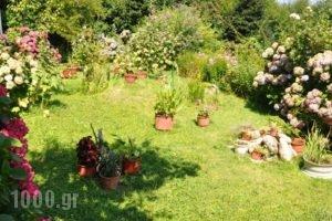 Villa Ton Rodon_lowest prices_in_Villa_Thessaly_Magnesia_Mouresi