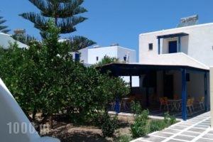 Damias Village_accommodation_in_Hotel_Cyclades Islands_Paros_Paros Chora